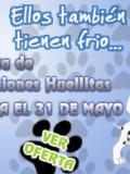 Promoción Creaciones Huellitas en Gamarra